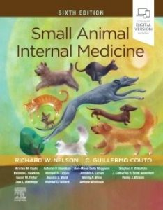 Small Animal Internal Medicine, 6th Edition